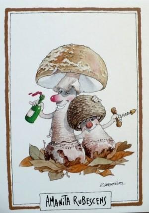 Notre « sortie champignons » annuelle